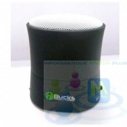 Haut-parleurs portable Bluetooth Ibucks